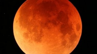 ププルのブログ 皆既月食